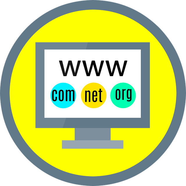 Domain Registration What